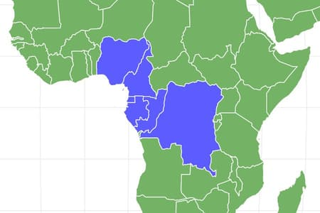 African Tree Toad Locations