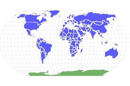 Bird Locations