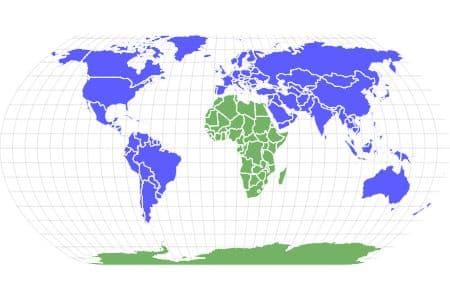 Camel Cricket Locations