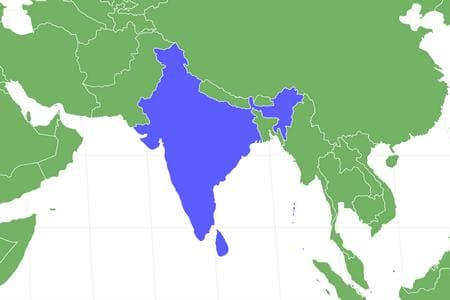 Indian Palm Squirrel Locations