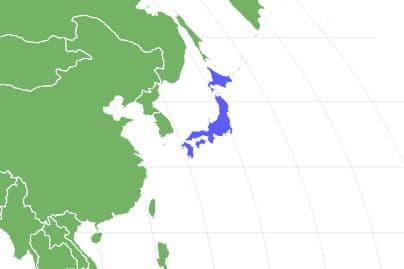 Japanese Squirrel Locations