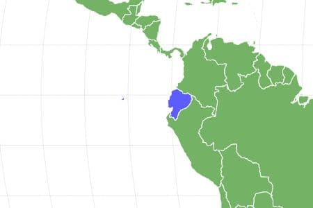 Marine Iguana Locations