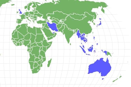 Redback Spider Locations
