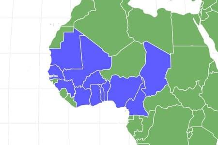 Senegal Parrot Locations