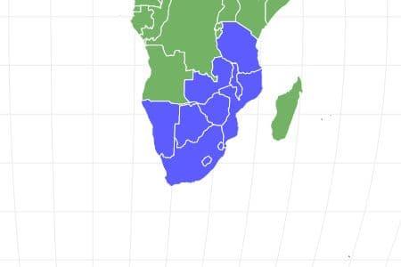 Vervet Monkey Locations