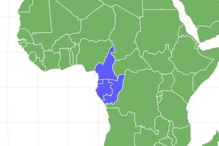Western Gorilla Locations