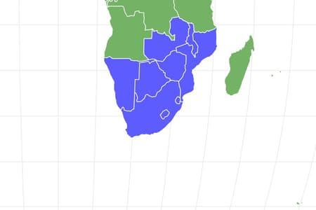 Wildebeest Locations