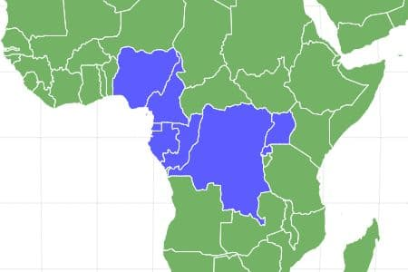 Gorilla Locations