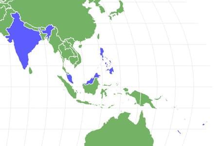 Hornbill Locations