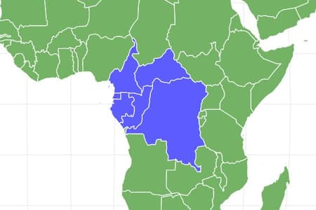 Western Lowland Gorilla Locations