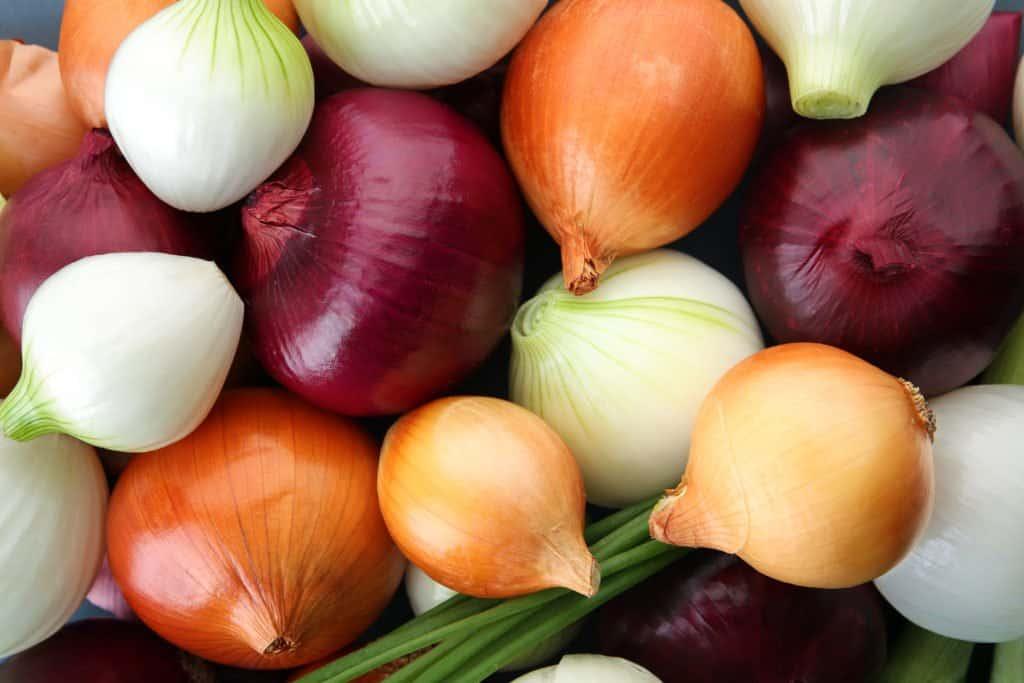 Varias cebollas rojas, blancas y amarillas.