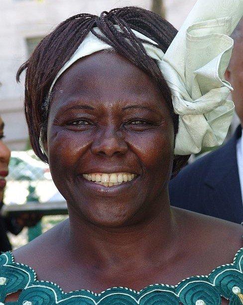 Famous Conservationists: Wangari Maathai