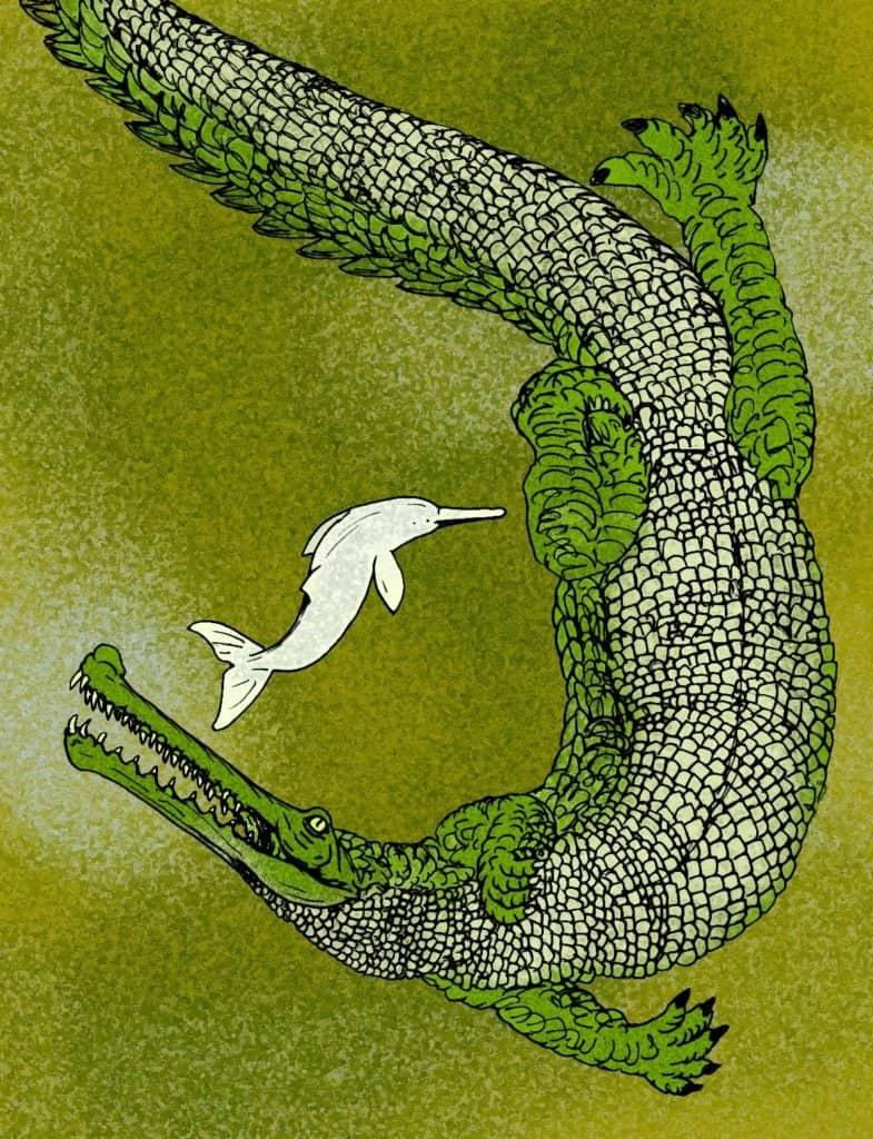 Los cocodrilos más grandes de la historia: Rhamphosuchus