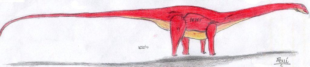 Los dinosaurios más grandes de la historia: Maraapunisaurus fragillimus