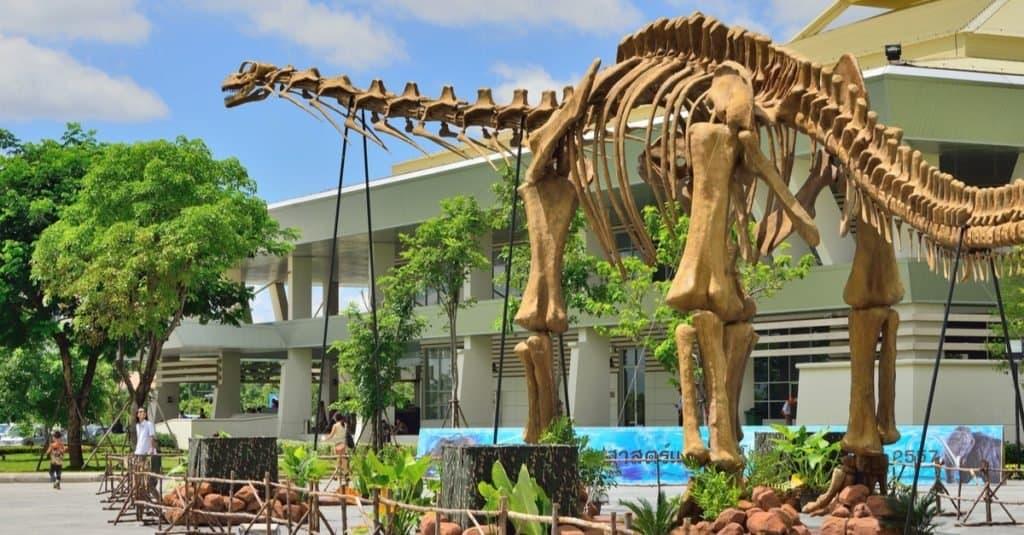 Los dinosaurios más grandes de la historia: Argentinosaurus huinculensis