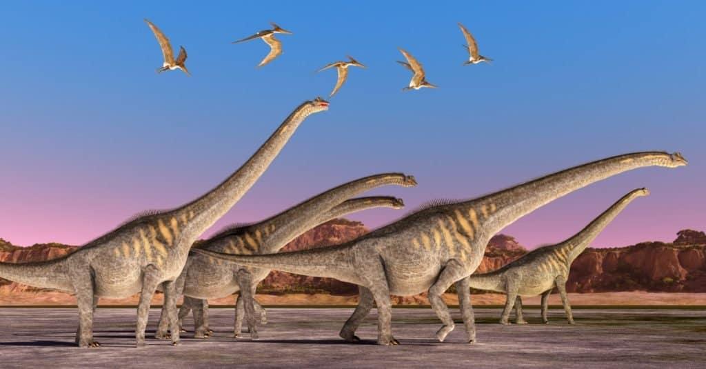 Los dinosaurios más grandes de la historia: proteles Sauroposeidon