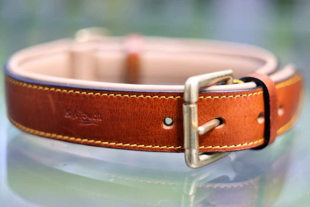 Soft touch padded leather dog collar