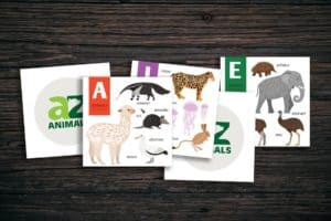 Alphabet Flash Cards - Quiet Practice Cards