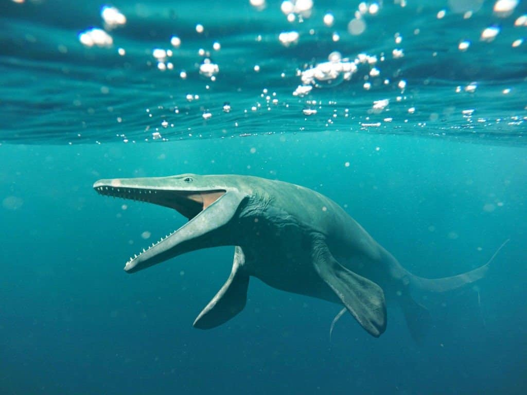 A mosasaurus hunts in prehistoric oceans