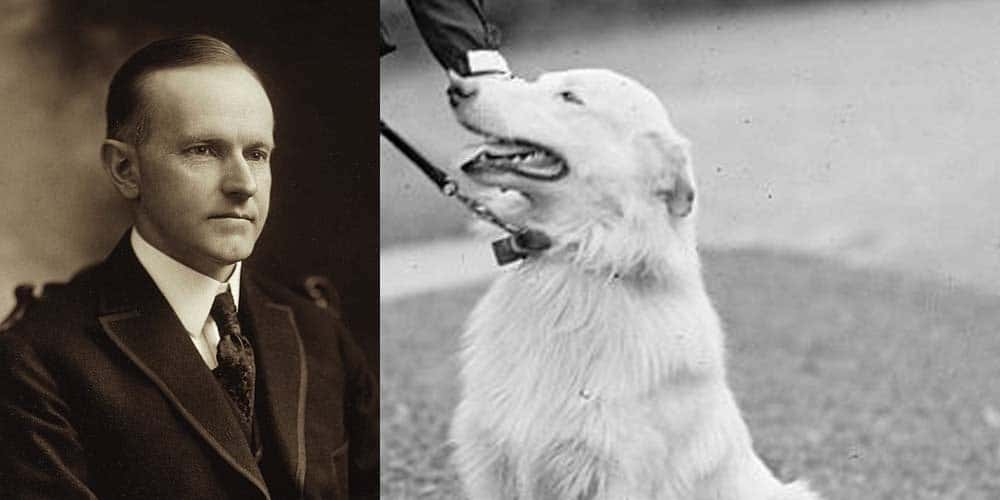 Rob Roy was the first dog under Calvin Coolidge