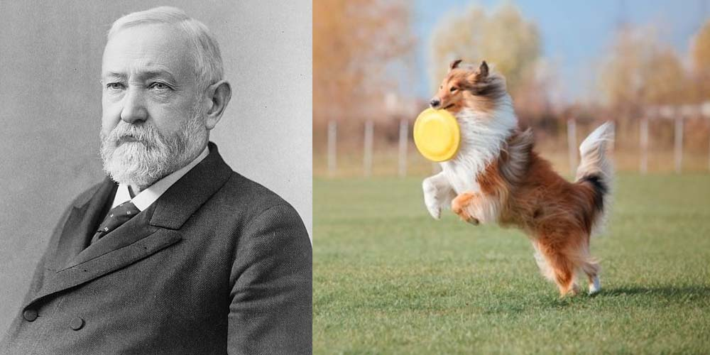 Benjamin Harrison and a Collie with a Frisbee