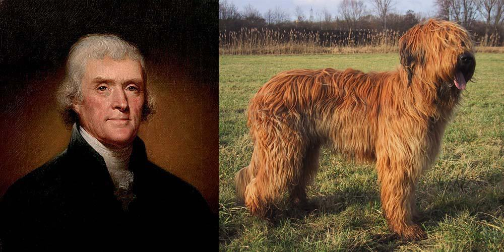President Thomas Jefferson had Briard dogs - First Dogs